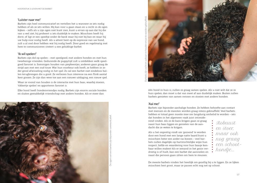Het Barbetboek Hoofdstuk 3 p 56-57