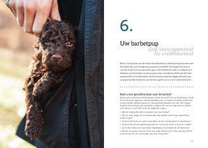 Het Barbetboek Hoofdstuk 6 p 132-133